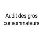 audit_gros_consommateurs